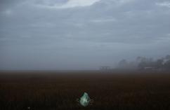 Good Soil - Jacque Holmes Photography 2019 (3)
